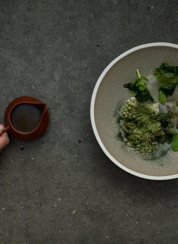 food#7 (credit P. A. Jørgensen)
